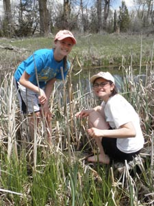 Kids gathering cattail roots.