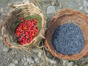 Handmade Baskets with Berries.